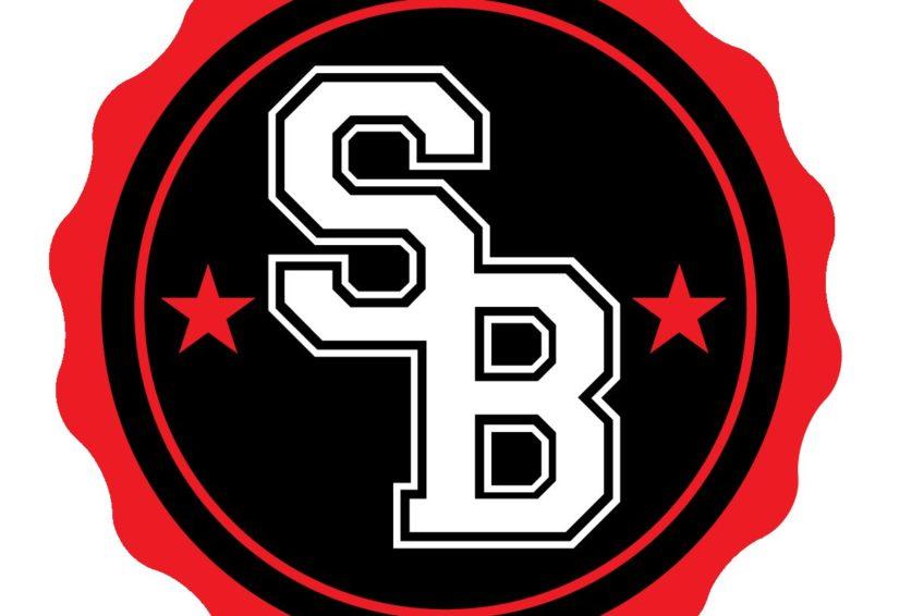 Skatebiz Logo